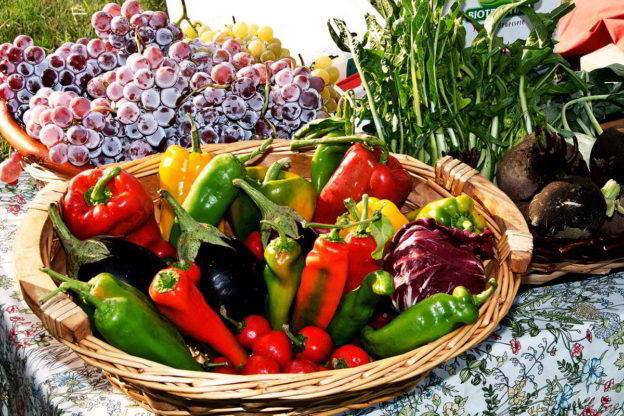 Cosa piantare a settembre le semine nell orto di settembre for Cosa piantare nell orto adesso