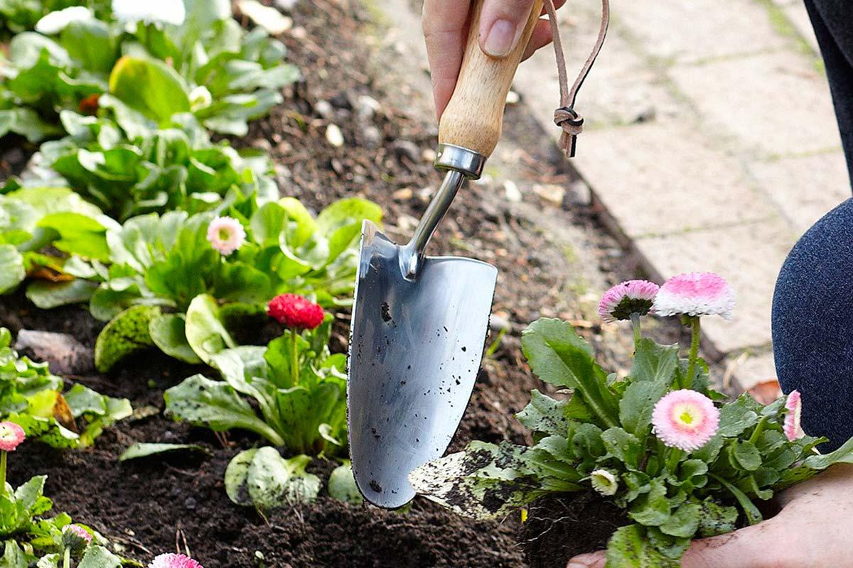 paletta da giardinaggio