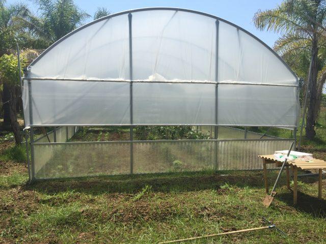 Come coltivare in una serra da orto il blog di celano for Irrigazione serra
