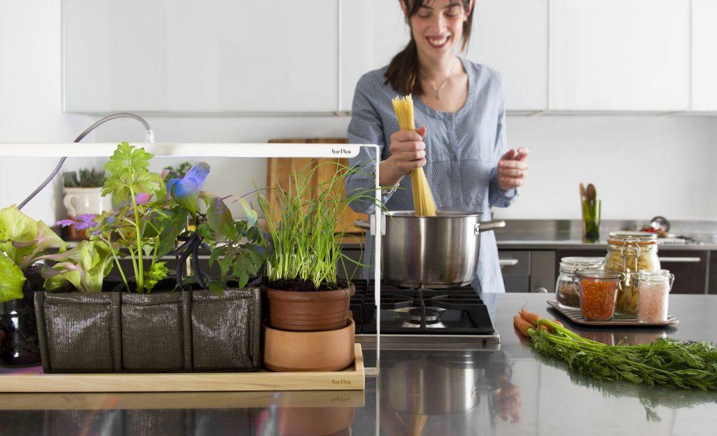 lampade da coltivazione in cucina