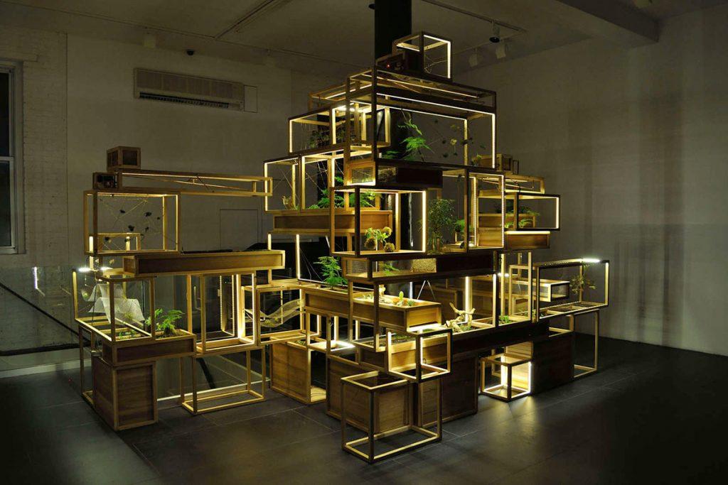 come costruire un terrario