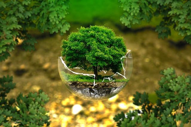 proteggiamo il nostro pianeta, nella giornata mondiale della Terra