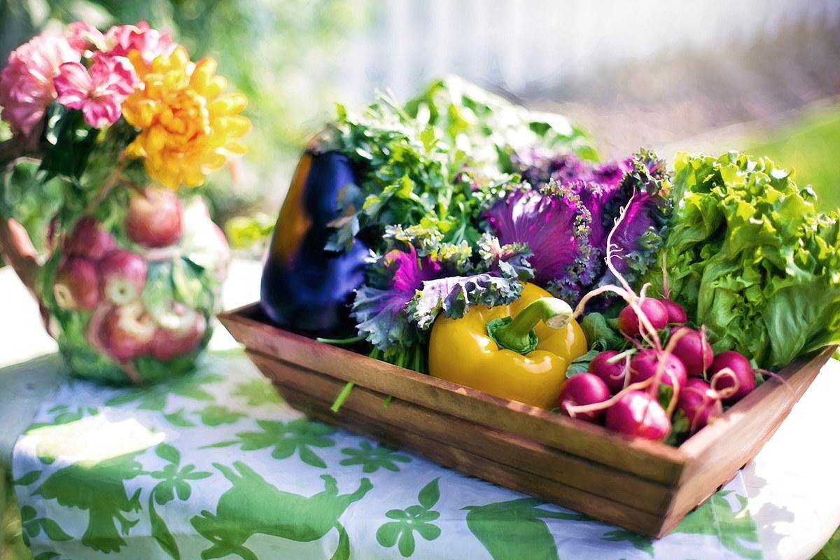 Cosa piantare nell'orto a luglio