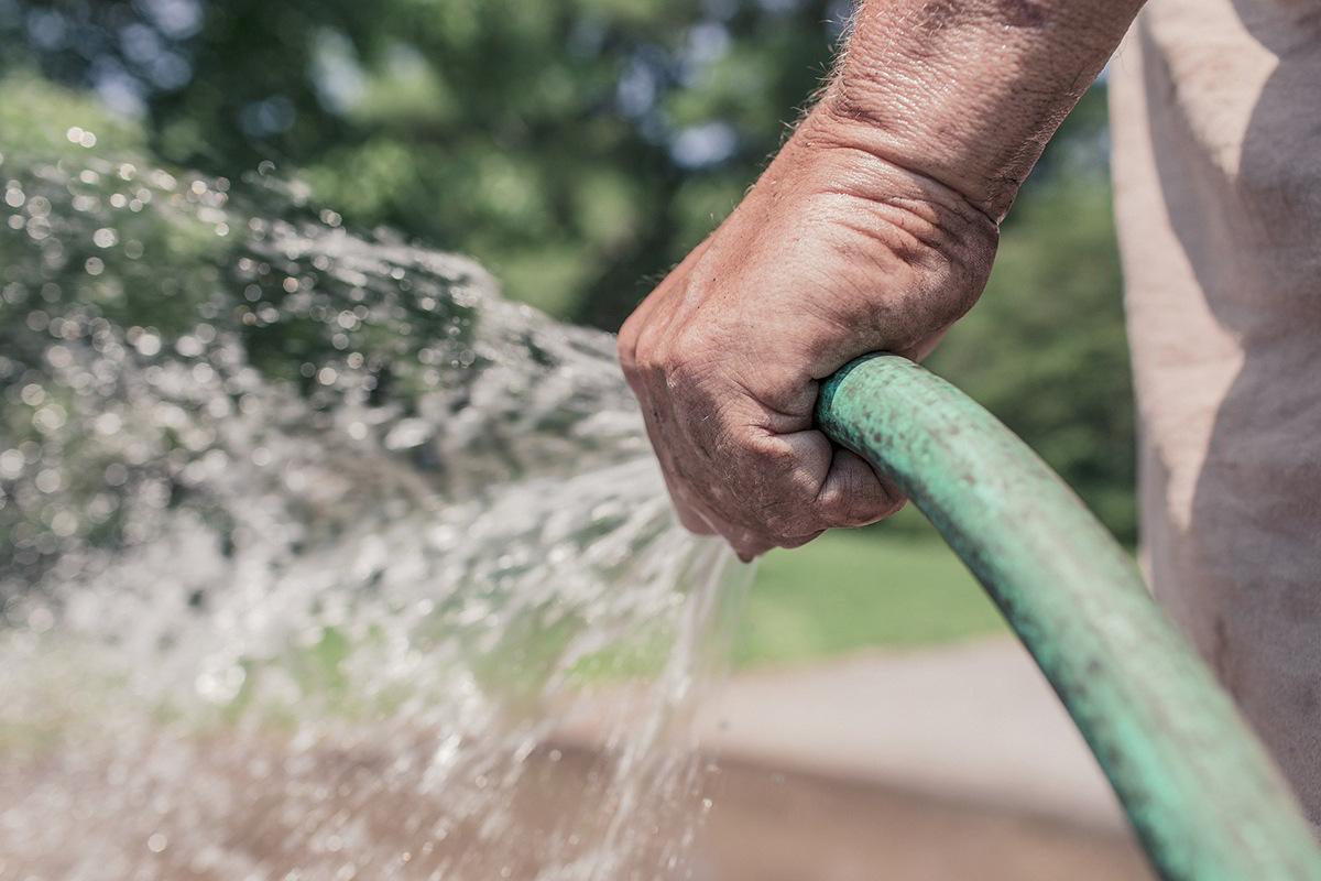 Irrigazione dell'orto a luglio