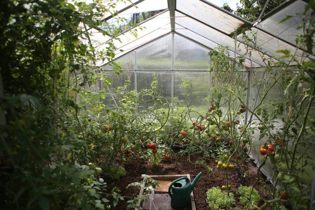 dimensioni serra agricola